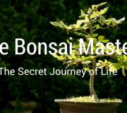 The Bonsai Master