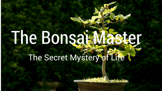 The Bonsai Master_002